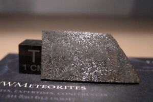Meteorite-NWA-974-Enstatite-Chondrite-Classified-E6