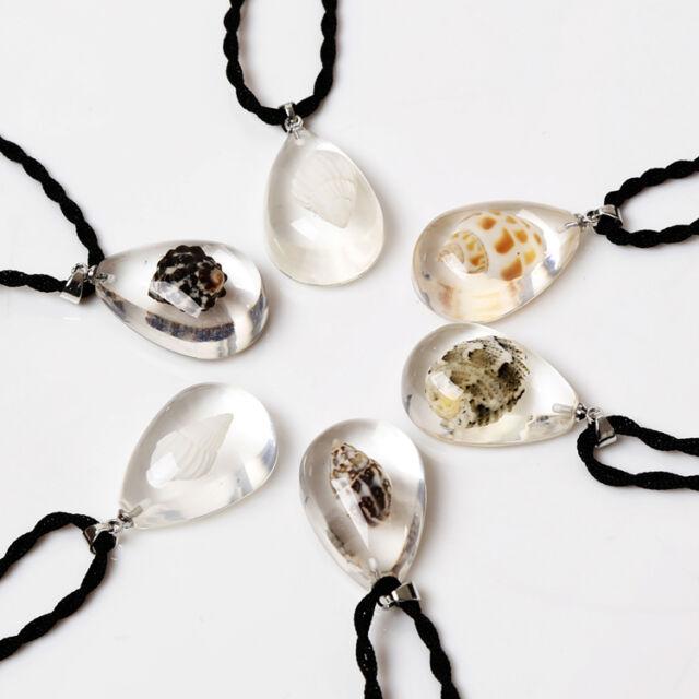 Fashion Crab Starfish Shell Amber Necklace Pendants Sea Marine Taxidermy Random