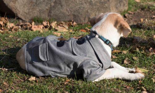 Military Static Rivited Fashion Designer Collared Pet Dog Coat Jacket