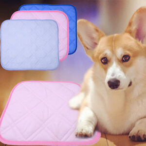 Dog Puppy Pet Chill Out Bed Soft Mat Summer Self Cooling