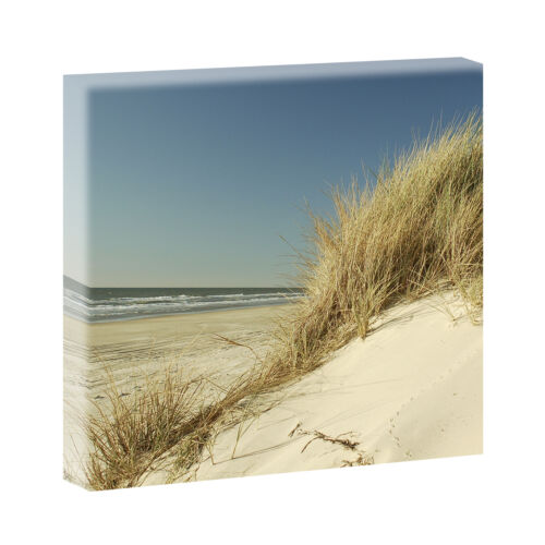 Top Bilder Kunstdruck auf Leinwand XXL Strand Meer Nordsee Düne 80 cm*80 cm 209