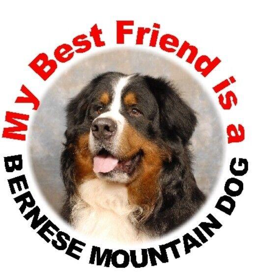 PYRENEAN MOUNTAIN DOG ON BOARD Car Sticker by Starprint