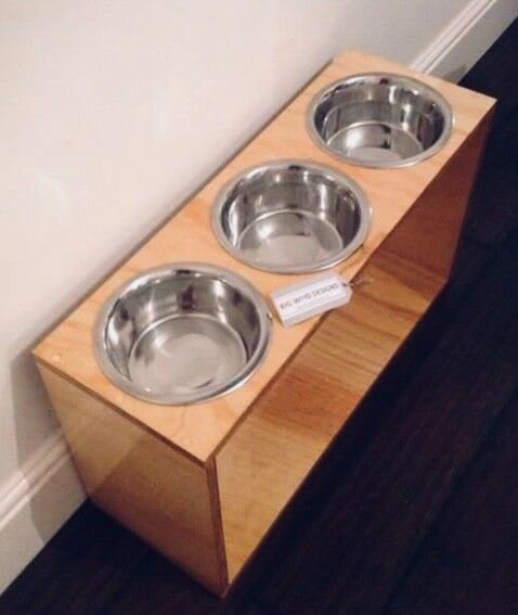 Extra Large Contemporary Raised Elevated Dog Feeder with Stainless Steel Bowls.