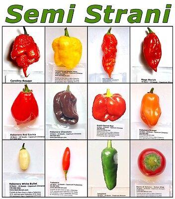 OMAGGIO 25 semi peperoncino super piccante CAROLINA REAPER YELLOW