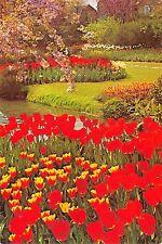 BG35790 tulipshow frans roozen vogelenzang netherlands