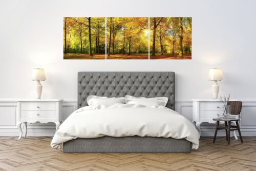 Total 24x72 inch Fall Forest Trees Canvas Wall Art Decor 24x24 3 Piece Set