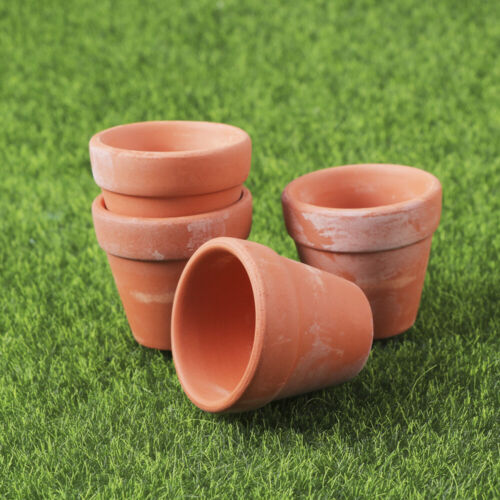 10Pcs Mini Small Nursery Flower Pots Clay Plant Pot for Planter Succulent