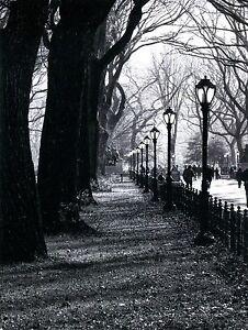 Carte-Postale-de-Central-Park-en-New-York-Ville-Prisent-par-Georgina-Gomez