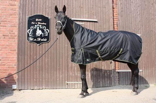High Neck térmica talla 155cm 100g 1200d manta de caballo invierno manta outdoordecke