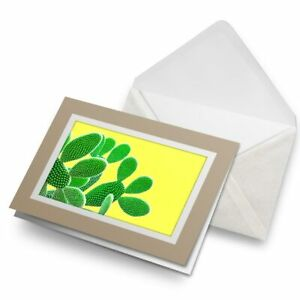 Greetings-Card-Biege-Green-Yellow-Cactus-Plant-Mexico-Desert-15515