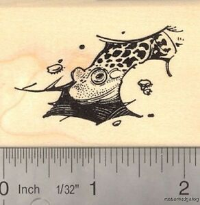 or Ocean  J21703 WM Lake Waves in a Pond Water Rubber Stamp