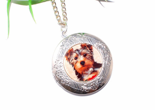 HUND Medaillon Halskette Foto Anhänger öffnen Kette silber dog + + AUSWAHL