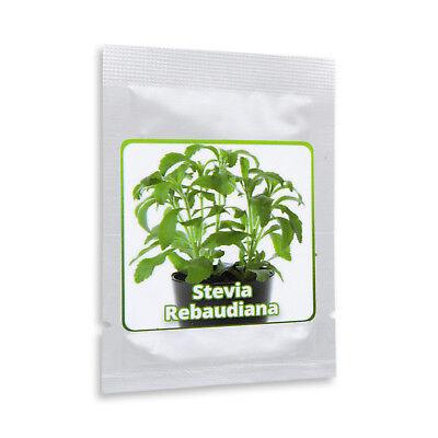 2000 Samen Stevia,Süßkraut,Rebaudiana criolla #120