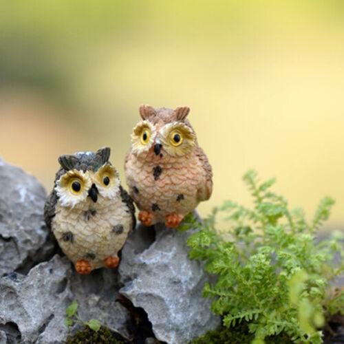 Garden Owl Moss Terrarium Desktop Decor Crafts Bonsai Animals Miniature Diy.