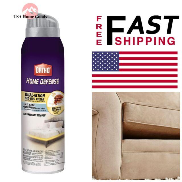 Fine Ortho Bed Bug Killer Aerosol Spray 18 Ounce Kills Bedbugs Fleas Machost Co Dining Chair Design Ideas Machostcouk