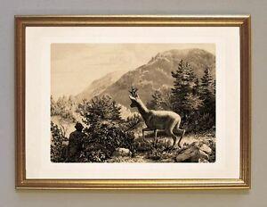 Schlummerstunde Carl Friedrich Deiker Jagdalbum 1865 Wilderer A3 255 Gerahmt