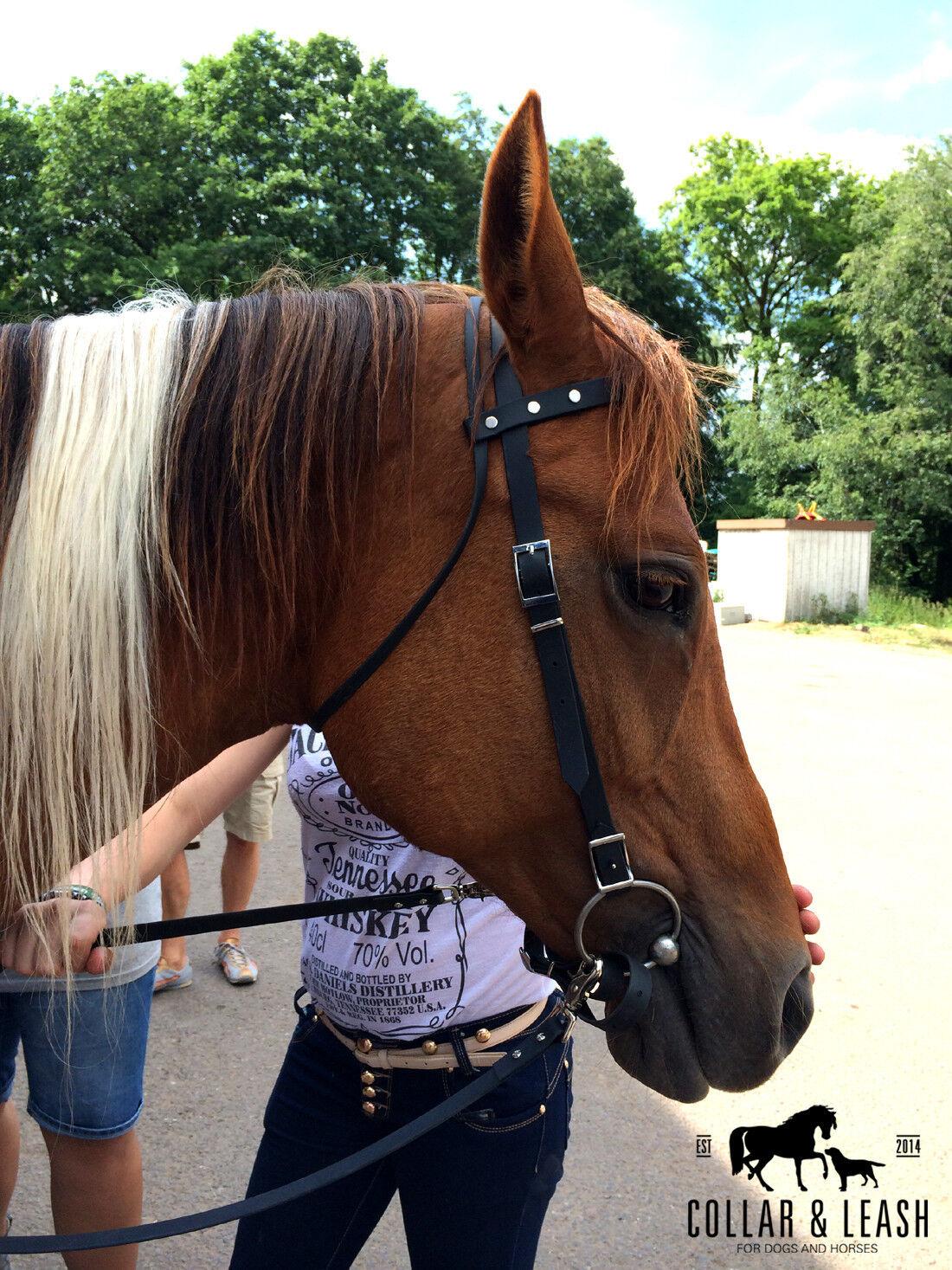 New Western Snaffle Westernzaum Biothane - Never again Grey Horse