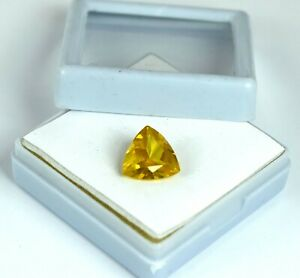 6-8 Ct Trillion Cut Yellow Sapphire September Birthstone Natural AGI Certified