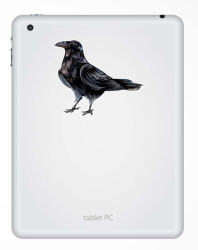 2 x 10cm Raven Crow Vinyl Sticker iPad Laptop Car Bike Helmet Blackbird #9192