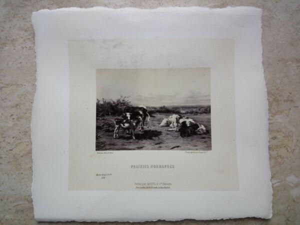 $800 Foto Litografia Stampa Goupil & Cie Prairies Normandes Cows Good Paysage Belle Arti