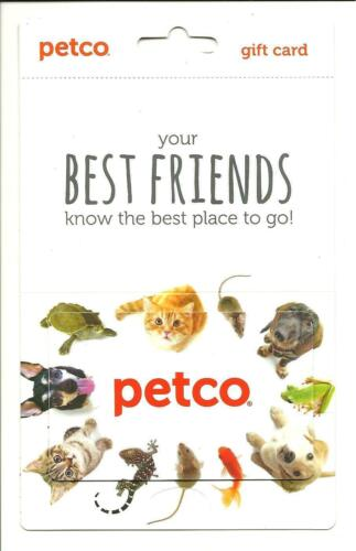 Petco Make Magic Together Dog Winter Gift Card With Hanger No$Value Collectible