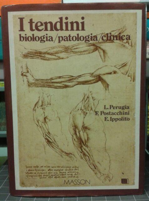 I TENDINI BIOLOGIA PATOLOGIA CLINICA-PERUGIA POSTACCHINI IPPOLITO 1B