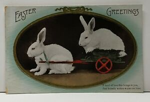 Easter-Rabbits-Bunny-in-A-Cart-A-Load-of-Love-Vintage-Postcard-G1