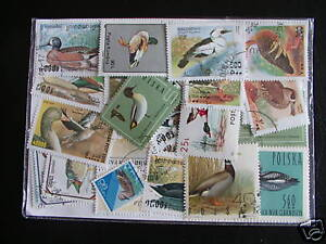 Obligeant Promo Timbres Animaux / Oiseaux / Canards: 25 Timbres Tous DiffÉrents