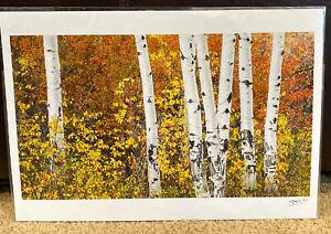 BILL-MAUZY-Teton-Aspens-13X19-Signed-COA-Unframed-Stunning-Art