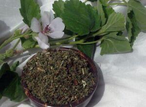 Krauterino 24-eibisch foglie tagliate - 50g