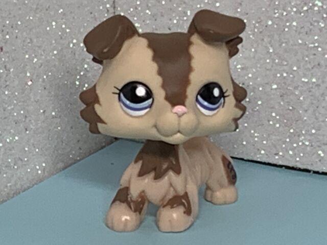 Littlest Pet Shop 363 Grey Collie Dog Puppy Blue Eyes Lps Toys Rare Figures For Sale Online Ebay