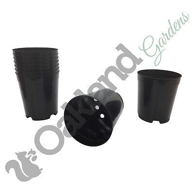 8 x Deep Rose VASI 3 litri l lt pianta vaso di fiori alto in Plastica Nero Forte