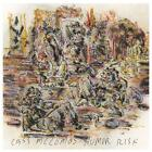 Humor Risk (Vinyl+MP3) von Cass McCombs (2011)