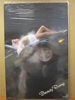 Vintage 1985 Beauty Rising Original Hot Girl Classic Car Poster 12029