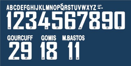 Lyon 2010-2011 Home Football Nameset for shirt Any Name /& Number