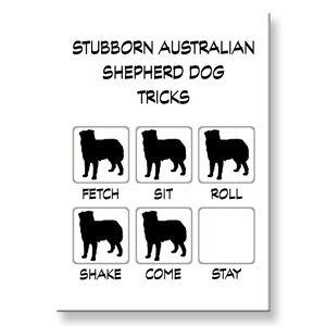 FRENCH BULLDOG Wanted Poster FRIDGE MAGNET No 2 DOG