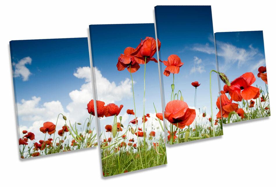 rot Poppy Field Flowers MULTI CANVAS WALL ART Boxed Framed