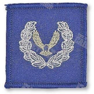 Master Air Cadet badge