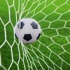 24x8ft Football Full Size Soccer Goal Post Net Straight Flat Sport 7.3x2.4m P&T