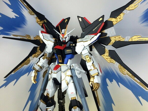 Wings of Light MG 1 100 Strike Freedom Gundam Dragoon Only Fire Effects