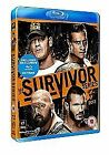 WWE - Survivor Series 2013 (Blu-ray, 2014)