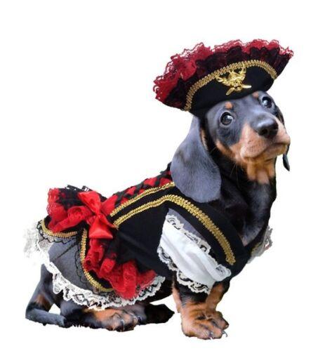 Swashbuckler Pirate Dog Costume Detailed Black Velveteen Petticoat Dress and Hat