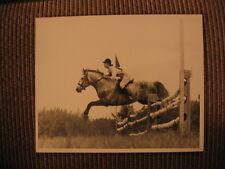 "Champion Connemara Pony ""An Tostal"" & Nancy Read up Original 1962 Horse Photo"
