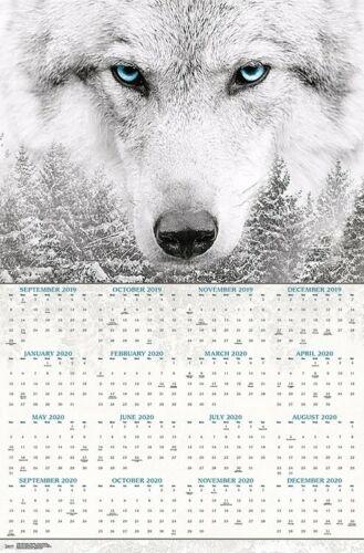22x34 FOREST 17699 WOLF 2020 POSTER CALENDAR