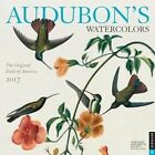 Audubon's Watercolors 2017 Wall Calendar The Original Birds of America by N