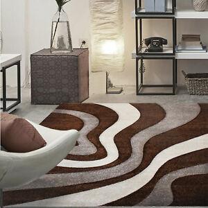 Charmant Das Bild Wird Geladen Moderner Frisee Designer Teppich Wohnzimmer  Mit Wellen Konturen