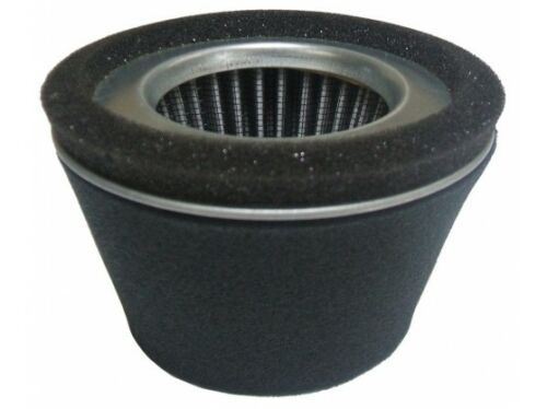 ROBIN ENGINE AIR FILTERS FREE P/&P