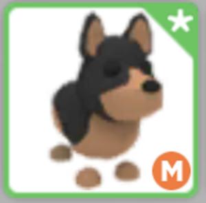Mega Australian Kelpie Rare Adopt Me Roblox Pet Ebay