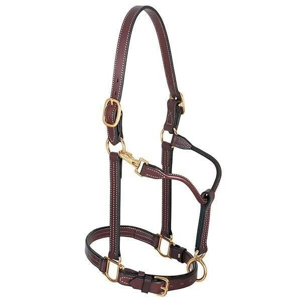 Weaver Leather Halter 1  Doubled and Stitched Leather Track Halter Mahogany