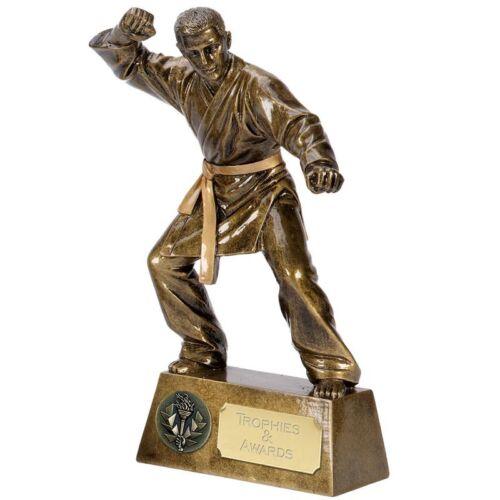 /'Pinnacle/' Karate Resin Trophy Award *Free Personalised Metallic Label* A1385C